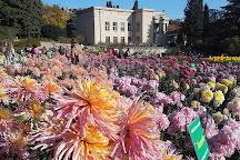 Nikita Botanical Gardens, Nikita, Crimea