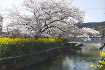 Tradi, Kyoto, Japan