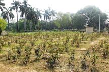Vidyavasini Park, Gorakhpur, India