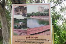 Eth Pokuna, Anuradhapura, Sri Lanka