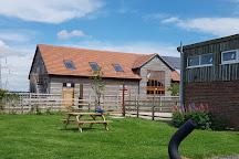 Green Dragon Rare Breeds Farm & Eco Centre, Hogshaw, United Kingdom