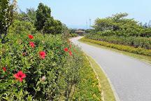 Iejima Hibiscus Garden, Ie-son, Japan