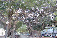 Parque de Canalejas, Alicante, Spain