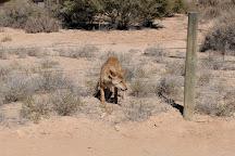 Simpson Desert, Simpson, Australia