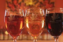 Maple Moon Sugarbush and Winery, Petoskey, United States