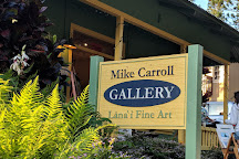 Mike Carroll Gallery, Lanai City, United States
