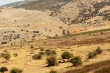 Tel Dan, Galilee, Israel