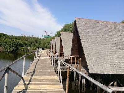 Taman Wisata Alam Mangrove Angke Kapuk Jakarta Telepon 62 21