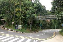 Sentosa Nature Discovery, Sentosa Island, Singapore