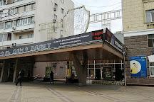 Krasnodar Regional Puppet Theatre, Krasnodar, Russia