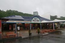Michi-no-Eki Motegi, Motegi-machi, Japan
