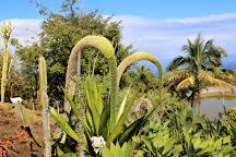 Conservatoire Botanique National, Saint-Leu, Reunion Island