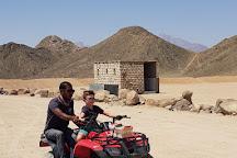 Falcon Adventure - Hurghada, Hurghada, Egypt
