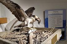 Annapolis Maritime Museum, Annapolis, United States