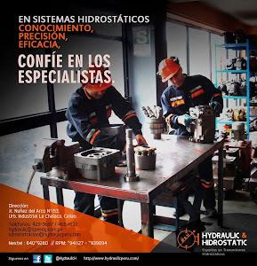 Hydraulic And Hidrostatic E.I.R.L. 5