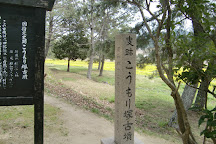 Komorizuka Ancient Tomb, Soja, Japan