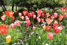 Akao Herb and Rose Garden, Atami, Japan