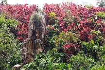 Jardin De Valombreuse, Petit-Bourg, Guadeloupe