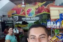 Sayulita Farmers Market/Mercado del Pueblo, Sayulita, Mexico