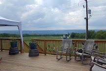 Bagley's Poplar Ridge Vineyards, Hector, United States
