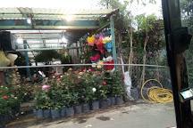 Mercado de las Flores de Nativitas, Mexico City, Mexico
