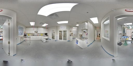 Kew Beach Veterinary Hospital | Toronto Google Business View