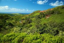 Skyline Hawaii - Poipu Zipline Tours, Poipu, United States