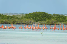 Pekelmeer Flamingo Sanctuary, Bonaire
