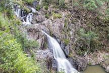 Conondale National Park, Kenilworth, Australia