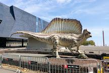 Museu de Ciencies Naturals de Barcelona, Barcelona, Spain
