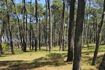 Isla Gorriti, Maldonado, Uruguay