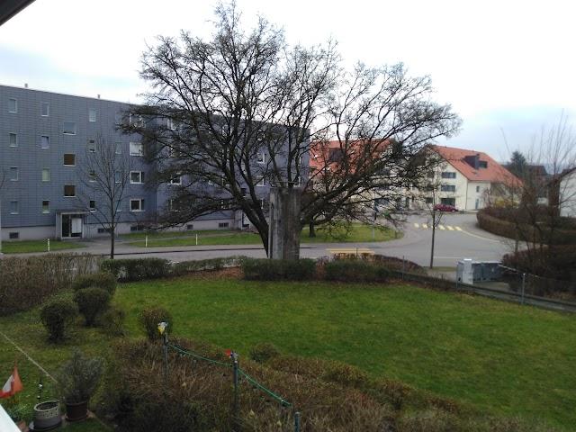 Hegnauer Bäckerei AG