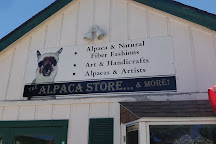 The Alpaca Store and More, Nederland, United States