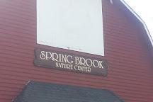 Springbrook Nature Center, Itasca, United States