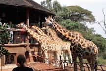 Africa Vacation Safaris, Nairobi, Kenya