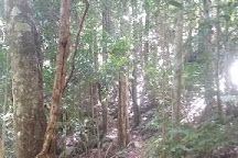 Boorganna Nature Reserve, New South Wales, Australia