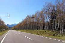 Mikuni Pass, Kato-gun, Japan