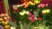 Цветы 24 Часа, Магазин, улица Косухина, дом 36 на фото Курска