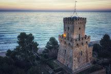 Area Marina Protetta Torre del Cerrano, Pineto, Italy