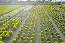 Tianwei Highway Garden, Tianwei, Taiwan