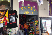 Funky Vibes, Hermanus, South Africa