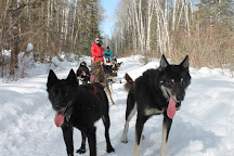 White Wilderness Sled Dog Adventures, Ely, United States
