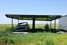 VW Slug Bug Ranch, Panhandle, United States