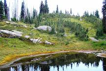 Mount Revelstoke National Park, Revelstoke, Canada