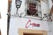 Carmen GastroFlamenco, Cordoba, Spain