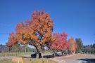 Vasona Lake County Park