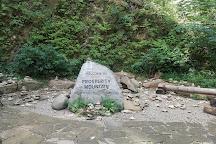 Foxfire Mountain Adventure Park, Sevierville, United States