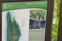 Inchcailloch, Balmaha, United Kingdom
