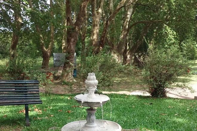 Visit Cofuesa on your trip to Salto or Uruguay • Inspirock