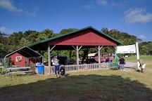 Clark's Elioak Farm, Ellicott City, United States